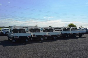 Steel Tray Fleet Vehicles